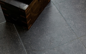 Barbury Limestone