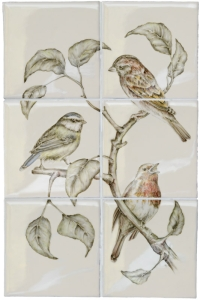 Birds B Colour Wash