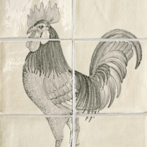 Cockerel B