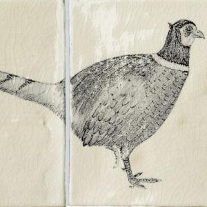 Pheasant A