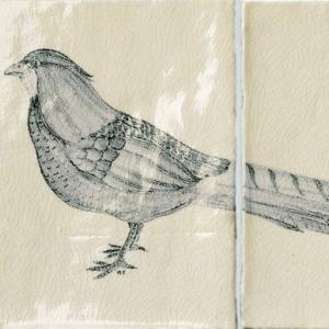 Pheasant B