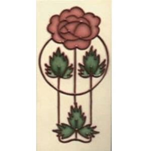 Rose Dog Rose