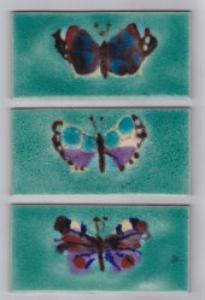 Woodland, 7 Spot, Peacock Butterflies
